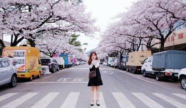 Hà Nội – Seoul – Đảo Nami – Everland | Tour Hàn Quốc Trọn Gói 5N4Đ