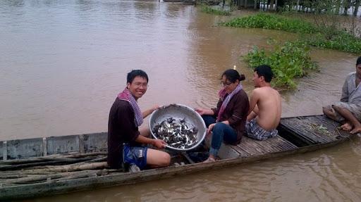 Hoạt động đánh bắt cá