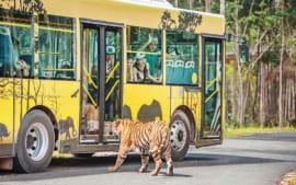 Tour Du lịch – Đảo Ngọc Phú Quốc 3N2Đ